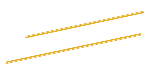The Professionals Band Logo